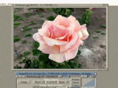 10 MARC - Amiga HAM6