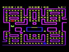 Bug Run & Gator Bait - VIC20