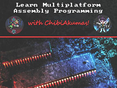 Learn Multiplatform Assembly Programming